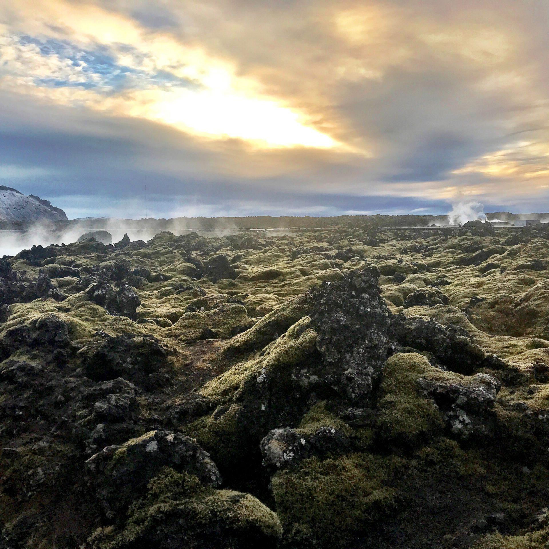Iceland_Trail_Heather_TuckmanWebsitekate-haynes-Wn_ZEHR4hbY-unsplash